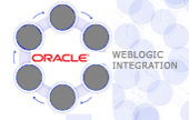 Oracle-Integration